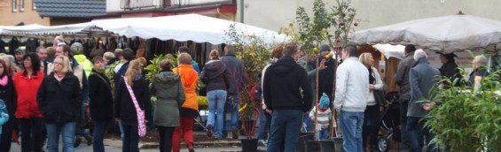 Martinsmarkt Rosbach