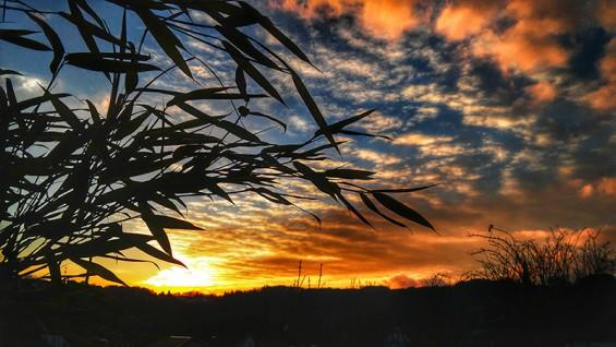 Karin Schmidt - Herbstlicher Sonnenuntergang in Rosbach mit Blick auf Roth