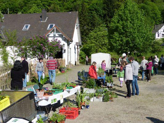 Garten- & Planzenflohmarkt Altwindeck - Bild: Lokale Agenda Windeck AG Naturnaher Garten